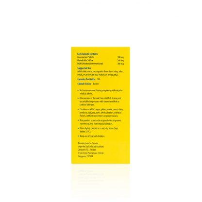 GLUCOSAMINE-300-CHRONDROITIN-MSM-KDGF1184-Side