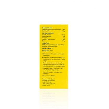 GLUCOSAMINE-750-CHRONDROITIN-KDGF5520-Side